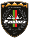 Pandora Styling Studio